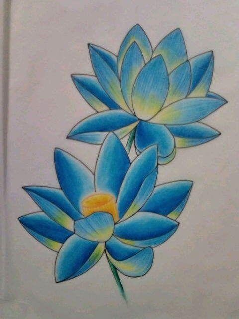 蓮の意味です☆蓮は泥の中に根があり、泥水を通って茎が伸びているにも関わらず、水面に出た花が清浄無垢である事から、蓮の花は『生命の創造』と『繁栄』の象徴とされて…