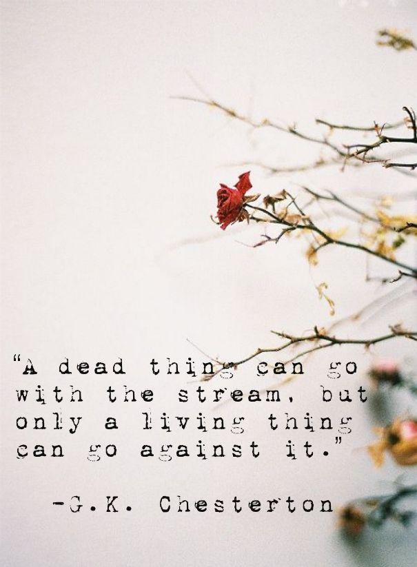 Oooooh how much I love this! g.k.chesterton quote living things dead things - Google Search