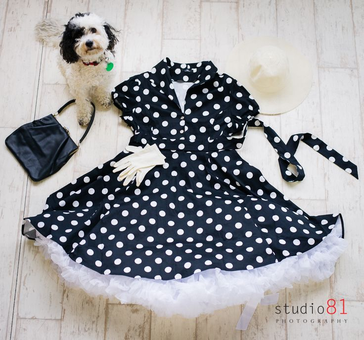 Checkers with a Black and White Polka Dot Dress (Size 18), White Petticoat, Black Leather Bag, Cream Hat, White Short Gloves