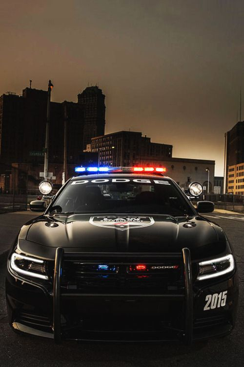 2015 Dodge Charger Pursuit AWD (LD) (#FTA)