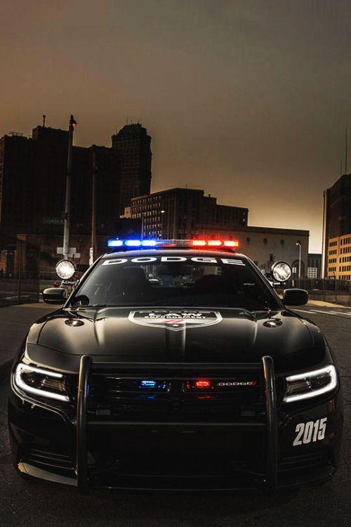 2015 Dodge Charger Pursuit AWD (LD) (#FTA)