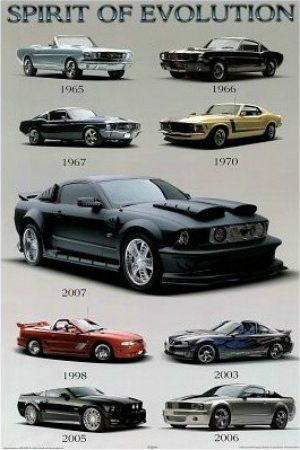 "SPT00537"" Mustang - Spirit of Evolution"" (24 X 36)"