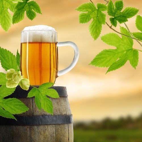 Egy jó sör a Balaton partján?   Pihenés a magyar tengernél akár 90% kedvezménnyel!