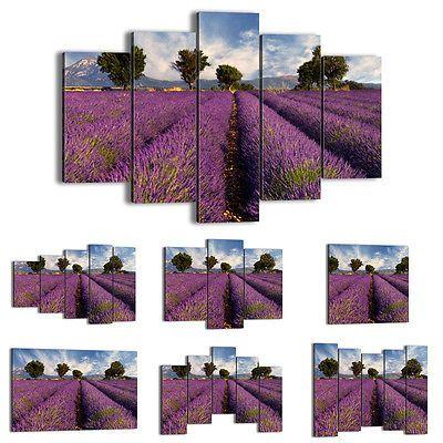 BILD LEINWAND BILDER ( 48 Muster ) DIGITAL ART Feld Heidekraut Blumen 0128 de in Möbel & Wohnen, Dekoration, Bilder & Drucke   eBay