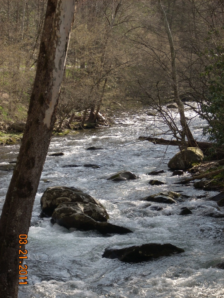 240 best flying rivers images on pinterest fishing fly for Fishing in gatlinburg tn