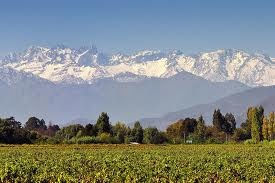 Viñas y Montañas en el Valle de Colchagua (Chile )