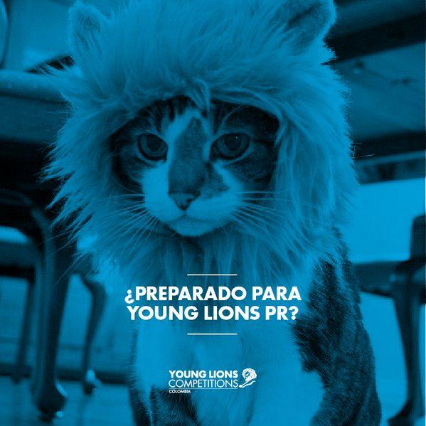 7 días nos separan de #YoungLionsCo