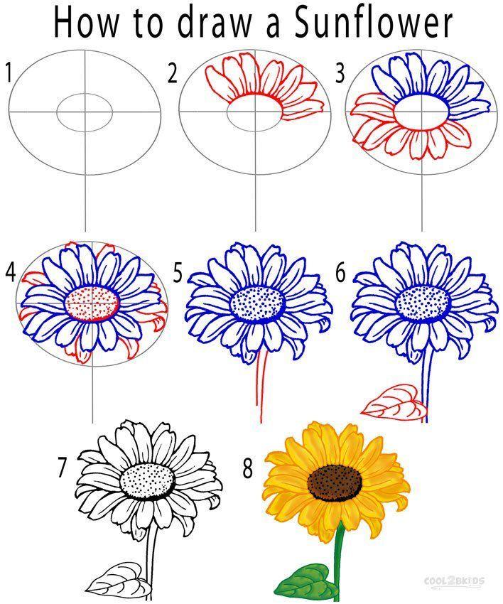 Sunflower Drawing Tutorial Con Imagenes Girasoles Dibujo