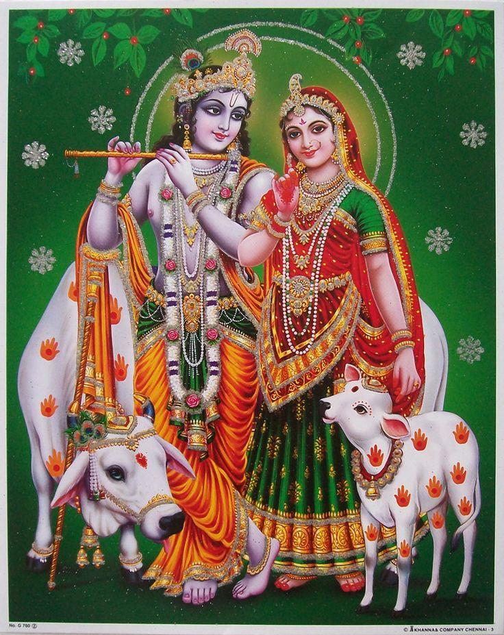 Radha Krishna and cows