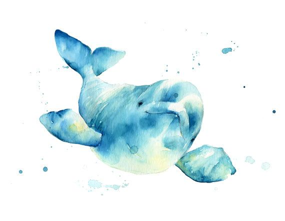 Hey, I found this really awesome Etsy listing at https://www.etsy.com/listing/259182297/beluga-whale-no2-print-watercolor-beluga