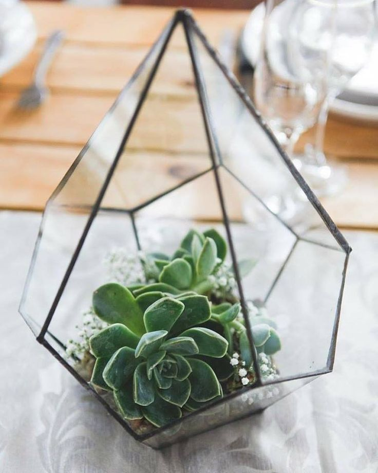 Geometric decor is really in this season. It adds such a unique and whimsical touch!