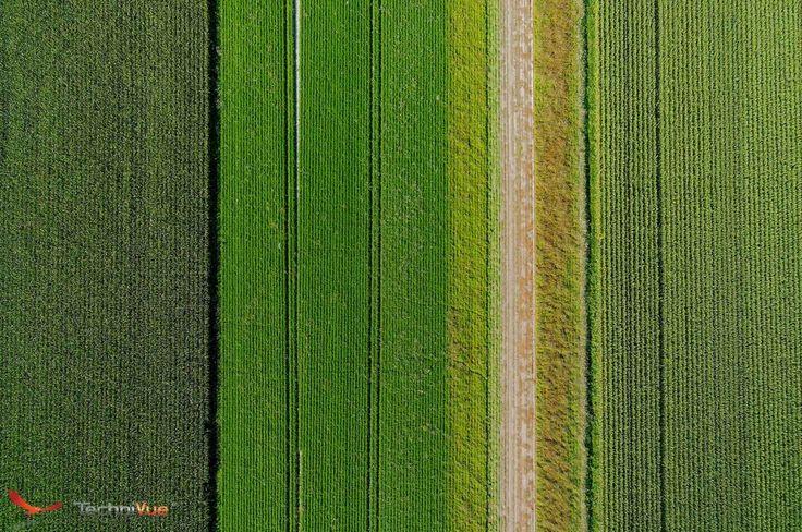 Vue aérienne drone Mont Saint Michel - Technivue