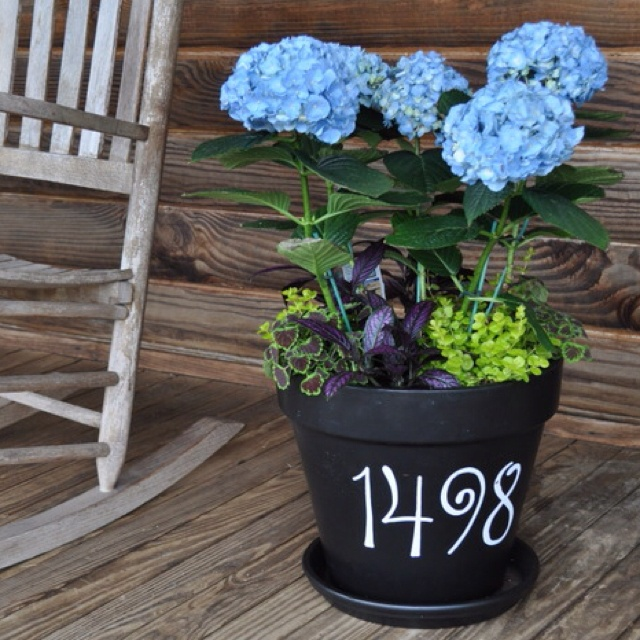 Painted terra cotta pot with shade plants