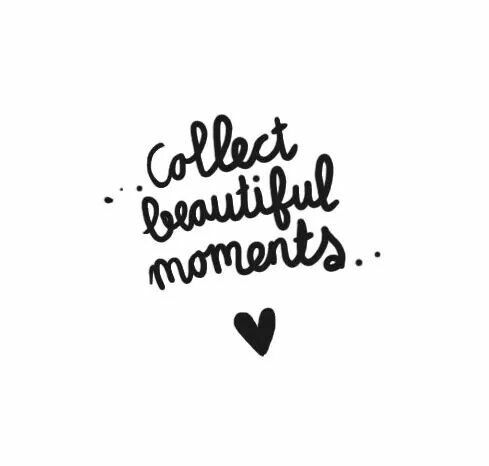 ...collect beautiful moments...