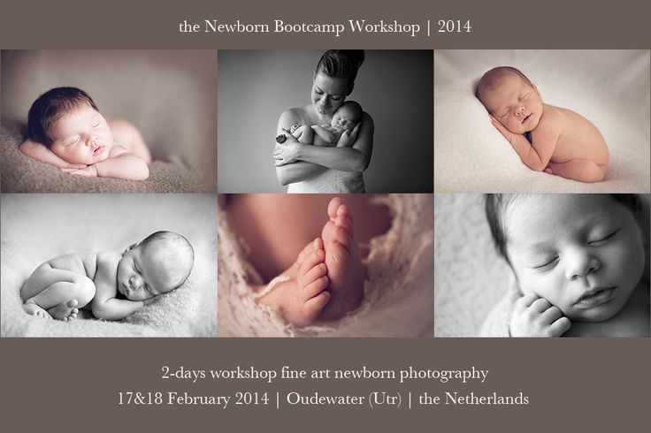 Free give away the newborn bootcamp workshop 1718 february 2014 oudewater utrecht the