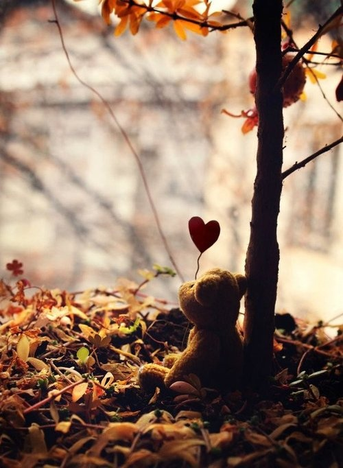 :): Lonely Heart, Fall Leaves, Cuddling Teddy, Pooh Bears, Teddy Bears, Bears Hugs, Bears Essential, Heart ღღ, Red Heart