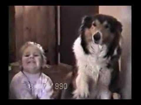 Little Girl Is Told To Say Cheese And You Won't Believe What This Dog Does   Video   A Place to Love Dogs