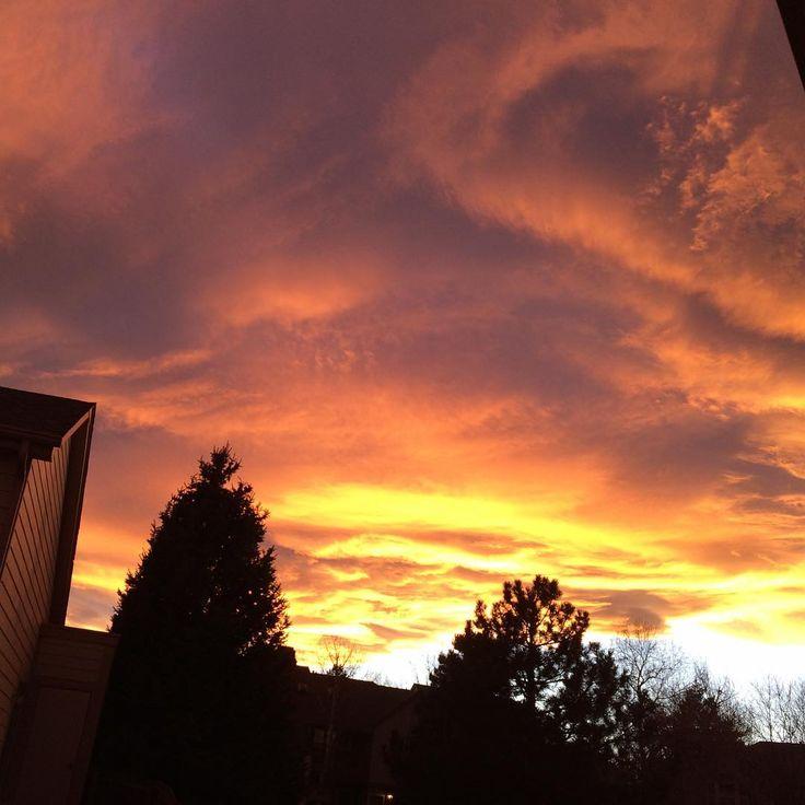 My entire neighborhood is pink and orange right now. Amazing sunset tonight. #sunsetsrule #orangeandpink #greatday