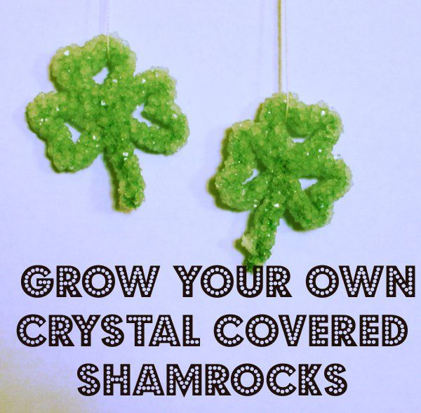 Creative Homeschool: Crystal Shamrocks