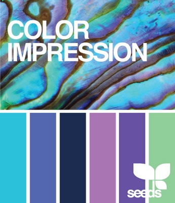 Blue And Purple Color Palette Ideas 197 Best Images About Aqua On Pinterest