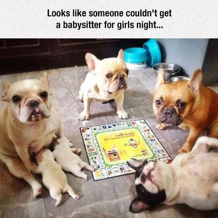 Really Funny Pictures That Will Make You Laugh - 34