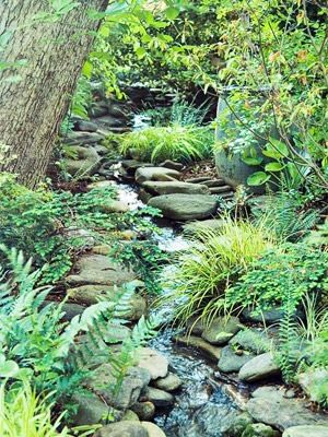 Find limestone & creek-rocks, haul them home for natural looking borders in a woodland garden.