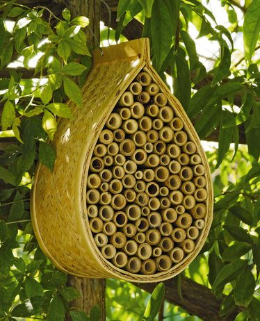Mason Bee House $18.95 Mason bees do not sting and can visit more blossoms per day than a honeybee, making them a great pollinator for the garden.