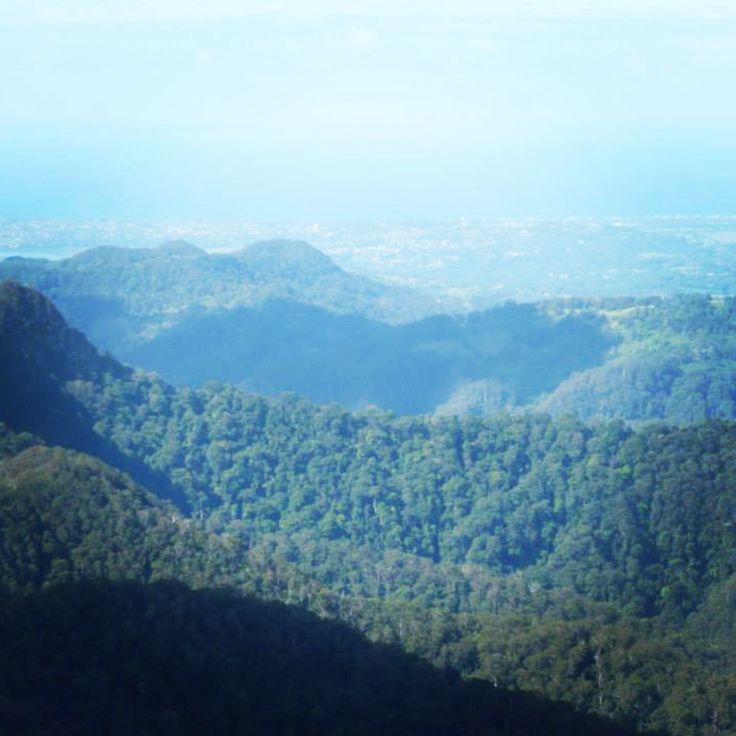 The Best of All Lookout Springbrook National Park