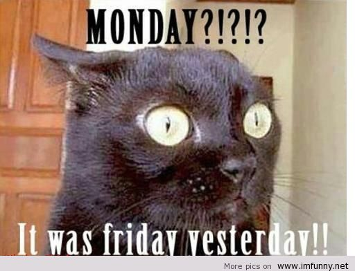 Best 20+ Monday Again Ideas On Pinterest