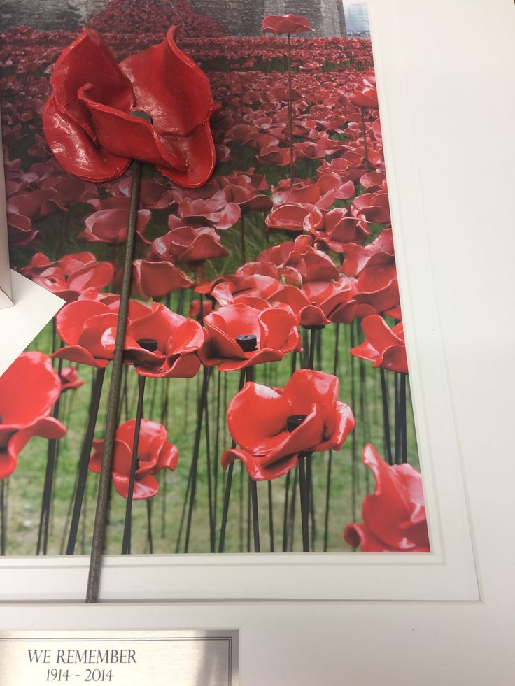 We are ending the day on a high with framing this ceramic poppy from the tower of London display! Donating £25 from every order to the Royal British Legion!