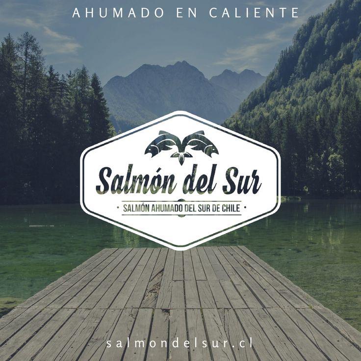 Salmón ahumado en caliente. Ahumado natural y con especias.  -Almendras -Amapola con merkén -Finas hierbas -Nueces -Sésamo salmondelsur.cl Santiago, Chile. CL +56979810264