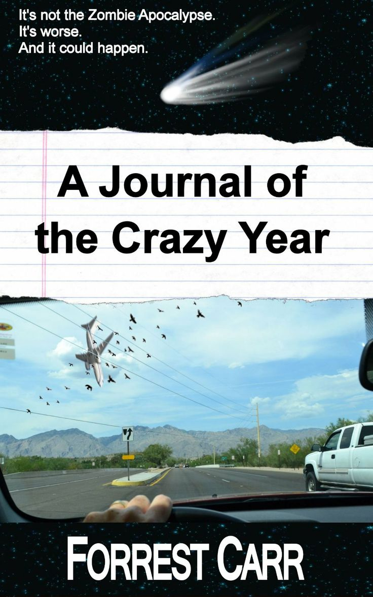 A Journal of the Crazy Year: Without warning, a jetliner falls from the clear blue sky ahead of a startled motorist, who manages to capture the last few seconds of the doomed flight on his cell phone. SCIFI SALE ***GRAB IT $0.99*** http://www.moreforlessonline.com/sci-fi--fantasy.html Don't miss out on tomorrow's FREEBIE$ & kindle deals! Join our list! http://mad.ly/signups/89856/join