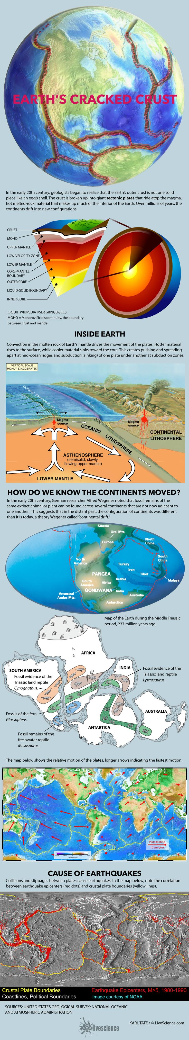 Plate Tectonics And Continental Drift (infographic)