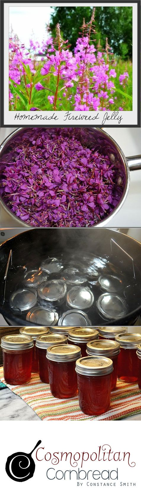 How to make homemade Fireweed Jelly from the beautiful wildflowers | Cosmopolitan Cornbread