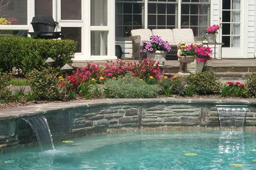 26 best images about hall home board on pinterest for Swimming pool landscaping plants