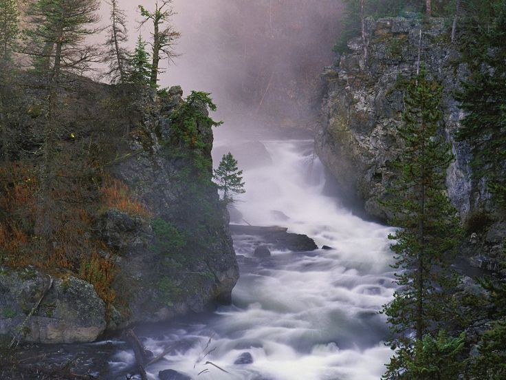 Firehole River Yellowstone National Park   ... Вайоминг / Firehole River, Yellowstone National Park, Wyoming
