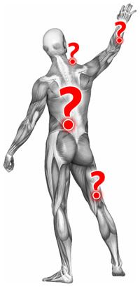 "Why do some experts doubt the existence of ""muscle knots"" and myofascial pain syndrome?"