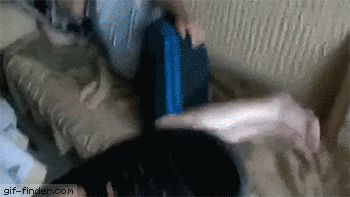 Wake up! Answer the phone | Gif Finder – Find and Share funny animated gifs