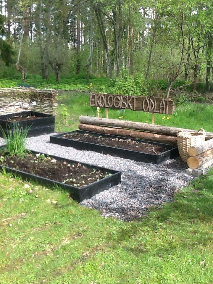 Även köksträdgården har fått en svart bas, grus, timmer och en rustik känsla. Inte klar än, men jag har någonstans att odla och förhoppningsvis finns här både grönsaker, kryddor och solrosor till sommaren!  Rustic garden