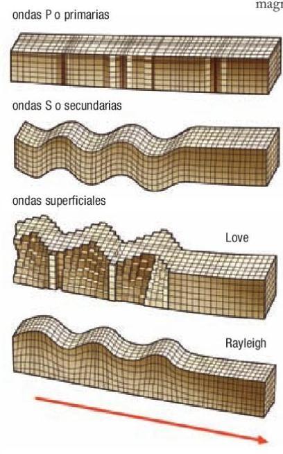 Tipos de ondas sismicas