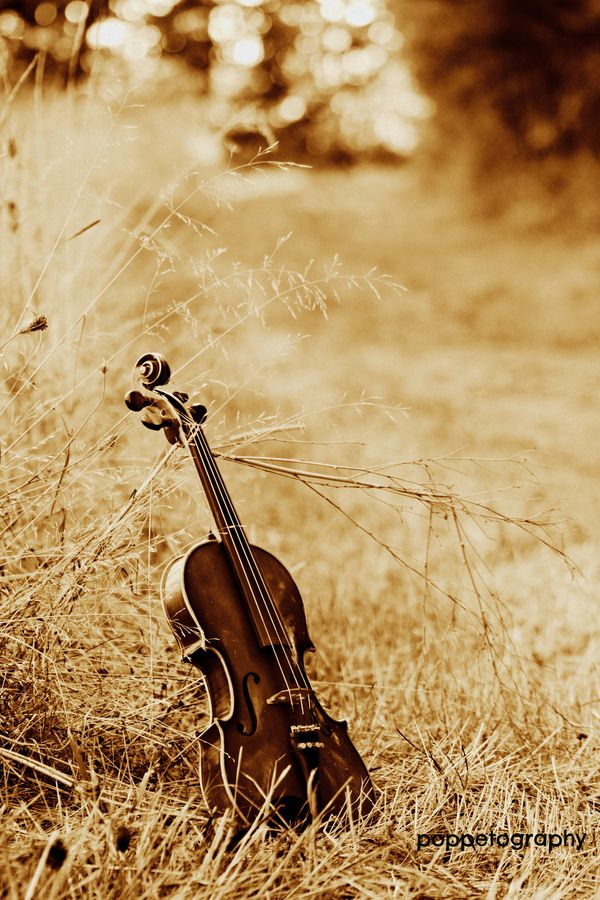 """""""You play?"""" I asked. He nodded in that way the meant that he didn't want to talk about it. Thrusting the instrument at him, demanding, """"Show me."""" (c) elisabeth marie hippen"""