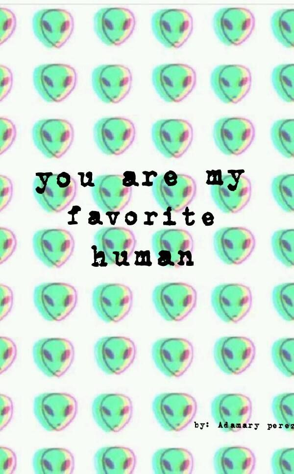 Você é meu humano favorito.