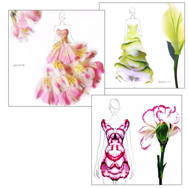 ilustração croquis feitos com petalas de rosas Grace Choi animale post 2