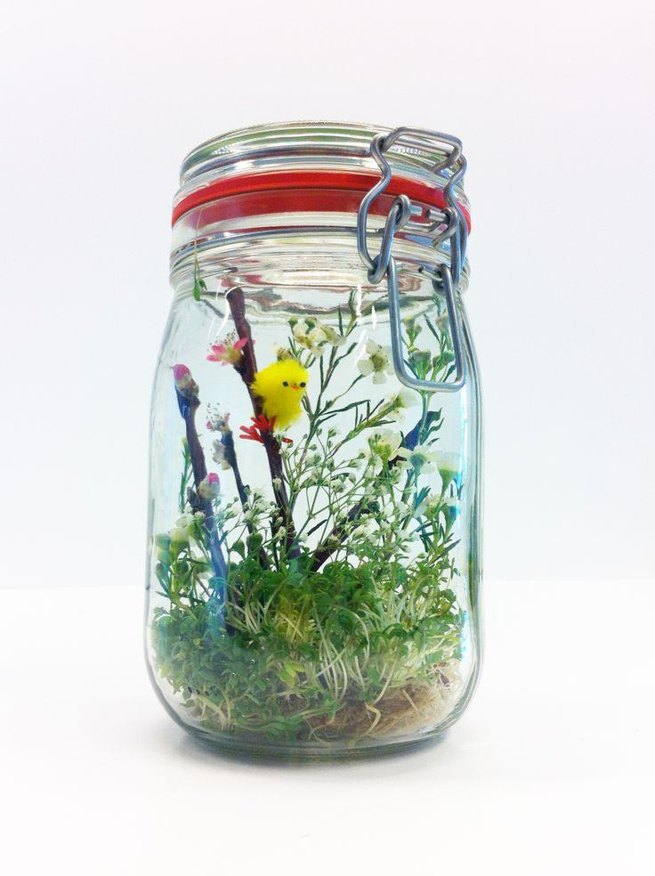 HEMA pasen - Weckpot wordt paaskuikentuin Nodig: Glazen (weck)pot, kleine HEMA kuikentjes, takjes, bloemetjes, tuinkers 1.Doe de tuinkers onderin de pot 2.Creëer een leuk voorjaarstafereel met de kuikentjes en het groen
