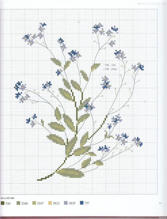 Gallery.ru / Foto # 9 - Herbier - Mosca