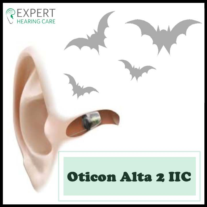 """The fact – """"Bats cannot see"""" might be a myth but """"invisible hearing aid"""" is not. Check this out: http://bit.ly/2fYLREi #ExpertHearingCare #HearingAids"""