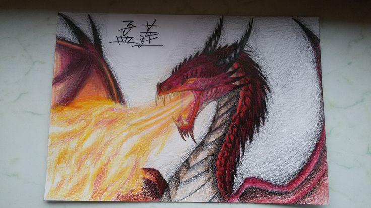Dragon colour pencils A4