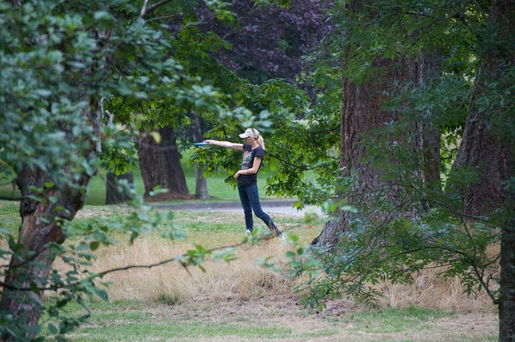 Rabbit hunting with Frisbees at Bowen Park