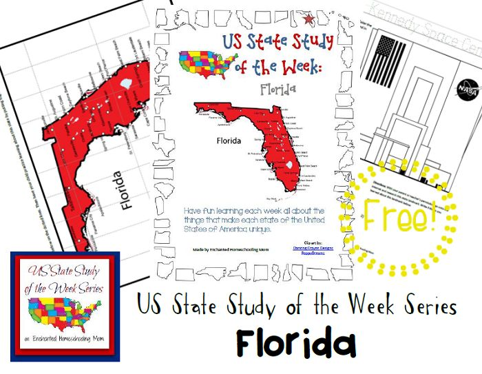 12 best Florida History - 4th Grade images on Pinterest | Teaching ...