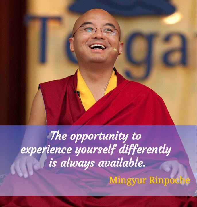 """Opportunity  ~ Mingyur Rinpoche http://justdharma.com/s/n2ygs  The opportunity to experience yourself differently is always available.  – Mingyur Rinpoche  from the book """"The Joy of Living: Unlocking the Secret and Science of Happiness"""" ISBN: 978-0307347312  -  http://www.amazon.com/gp/product/0307347311/ref=as_li_tf_tl?ie=UTF8&camp=1789&creative=9325&creativeASIN=0307347311&linkCode=as2&tag=jusdhaquo-20"""